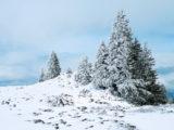 Randonnée - Montricher – Mont Tendre