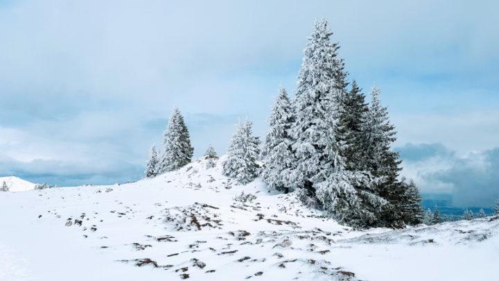 Montricher – Mont Tendre