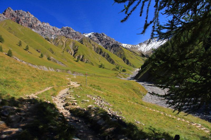 Parc naziunal svizzer