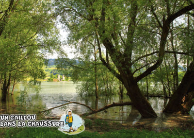 Galerie d'images - Lac de la Gruyère
