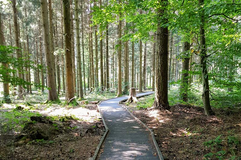Villars-Tiercelin, parcours Handicap & Nature