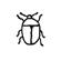 Détermination - Insecte - Silhouette - Coléoptère