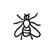 Détermination - Insecte - Silhouette - Diptère