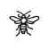Détermination - Insecte - Silhouette - Hyménoptère