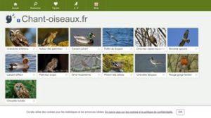 Partenaires - www.chantoiseaux.fr
