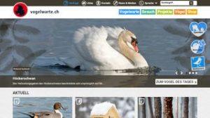Partenaires - www.vogelwarte.ch